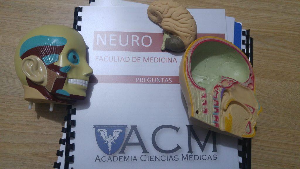 preparacion neuro ACM