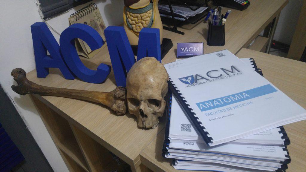 preparaciones anatomia ACM